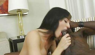 Stranger enjoys having delicious gal riding his huge cock